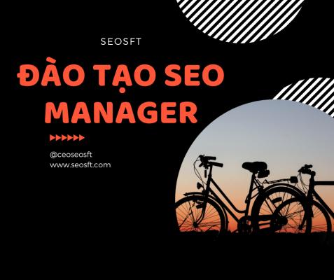 Đào Tạp SEO Manager